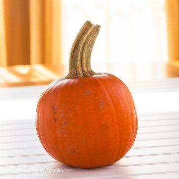 Sweet pumpkin - Andrea Meyers