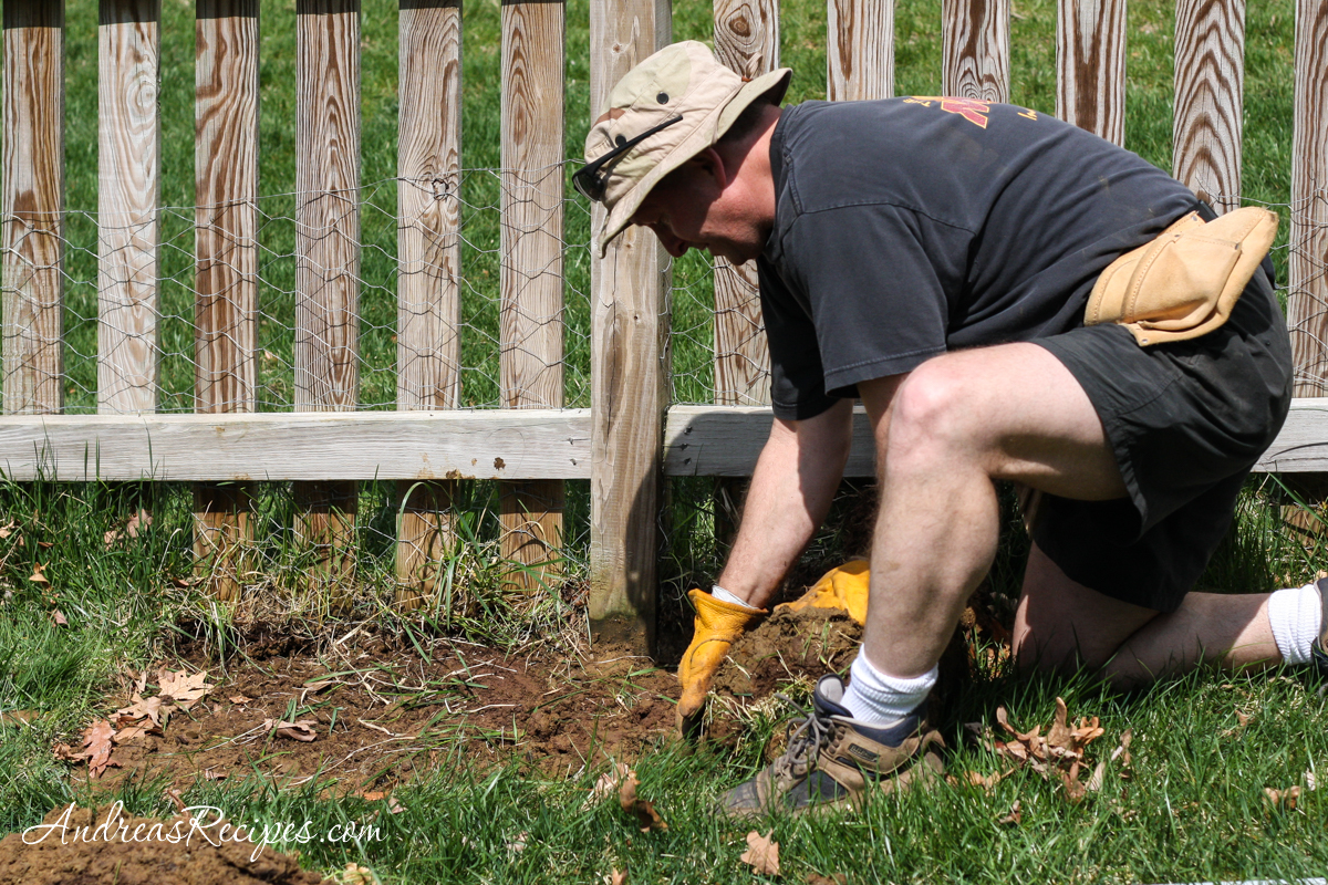 Michael removing sod for the asparagus bed - Andrea Meyers