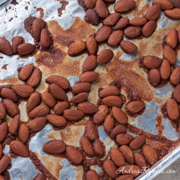 Tamari Almonds - Andrea Meyers