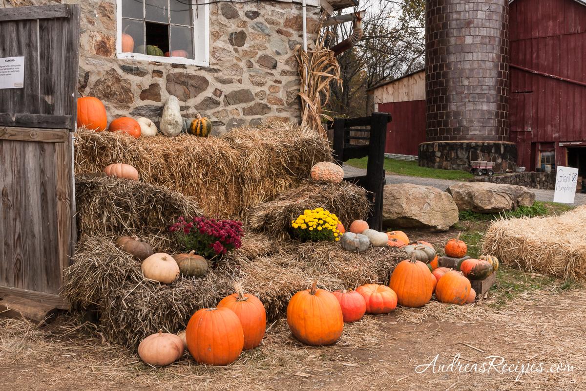 Pumpkins outside the stone barn at Wegmeyer Farms in Loudoun County, VA
