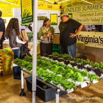 Endless Summer Harvest booth at Loudoun Expo - Andrea Meyers