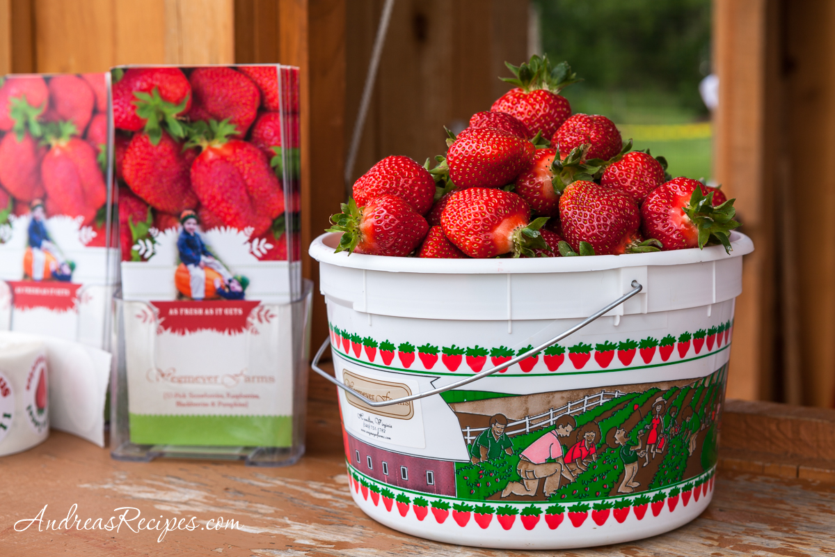 Wegmeyer Farms Strawberries - Andrea Meyers