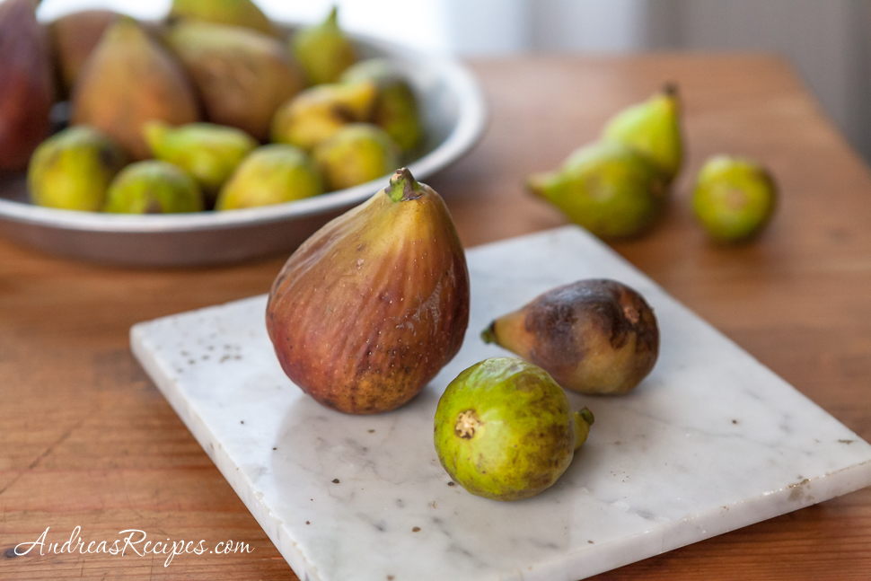 Figs - Andrea Meyers