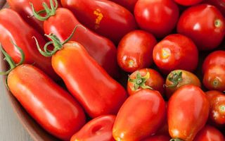 Weekend Gardening: Tomato Journal, Paste Tomatoes