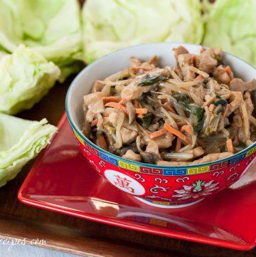 Mu Shu Pork Lettuce Wraps - Andrea Meyers
