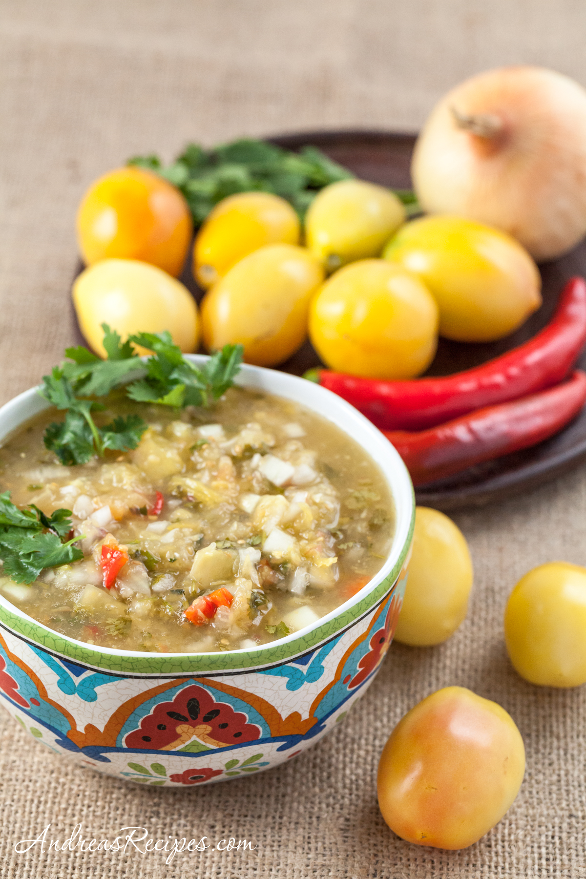 Sweet Yellow Tomato Salsa with Vidalia Onion, Red Chilies, Lime, and Cilantro - Andrea Meyers