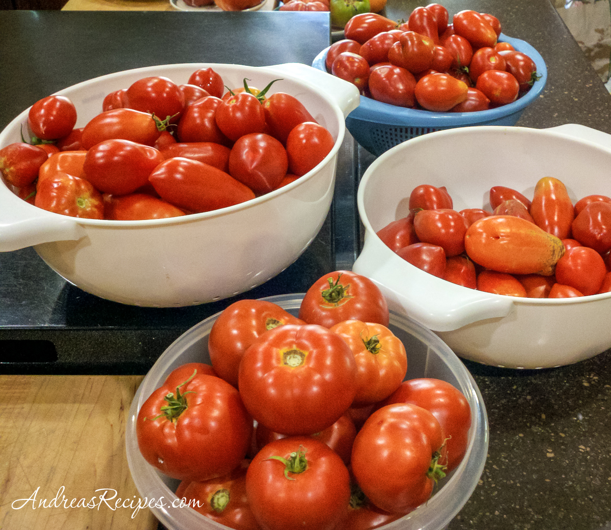 Tomatoes in colanders on the kitchen counter - Andrea Meyers