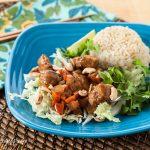Vietnamese Caramel Pork (The Kids Cook Monday) - Andrea Meyers