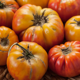 Weekend Gardening: Mr. Stripey Tomatoes