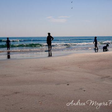 Family at the beach - Andrea Meyers
