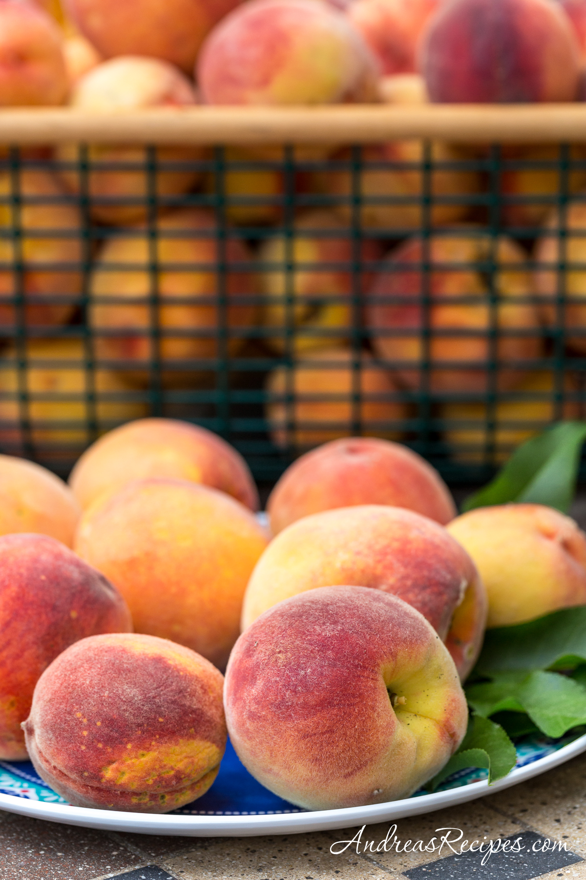 Loring peaches from our backyard - Andrea Meyers